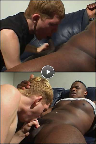 big dick tight asses video