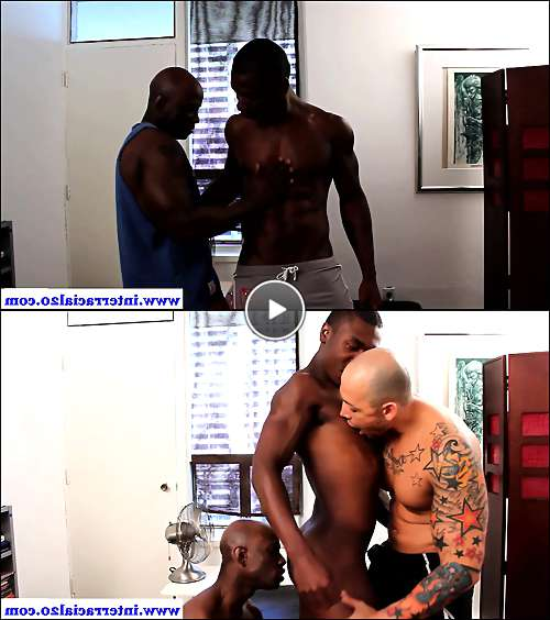 hot muscled gays video